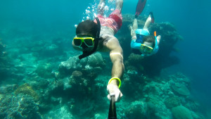 Best way to see the great barrier reef